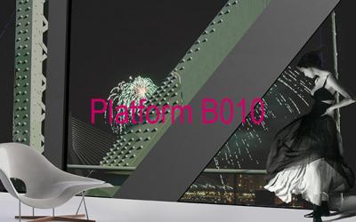 Platform B010